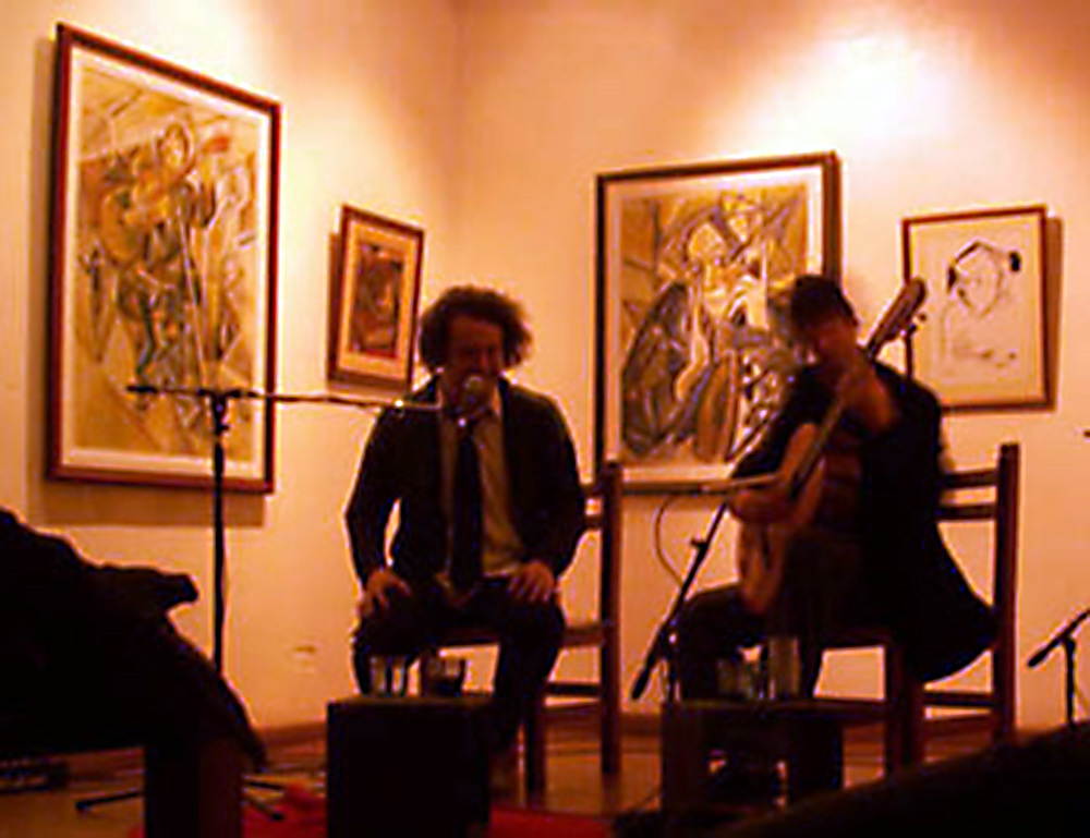 concierto-alvi-singer-2013